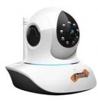 Видеокамера J2000IP-CmPTZ-111